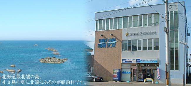 船泊漁業協同組合